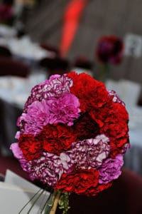 Topiary Carnations